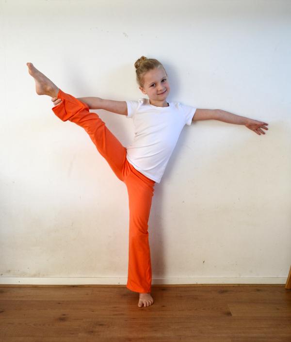 Everyday Yoga Pants