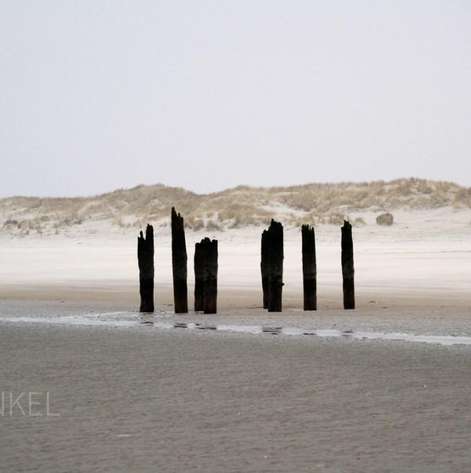 Beach Terschelling