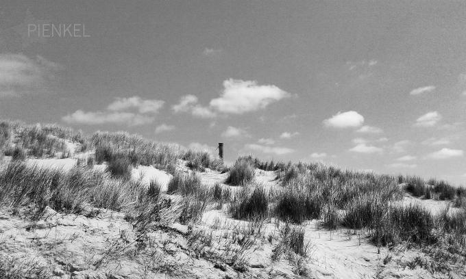 52 Weeks Photo Project – Week #21