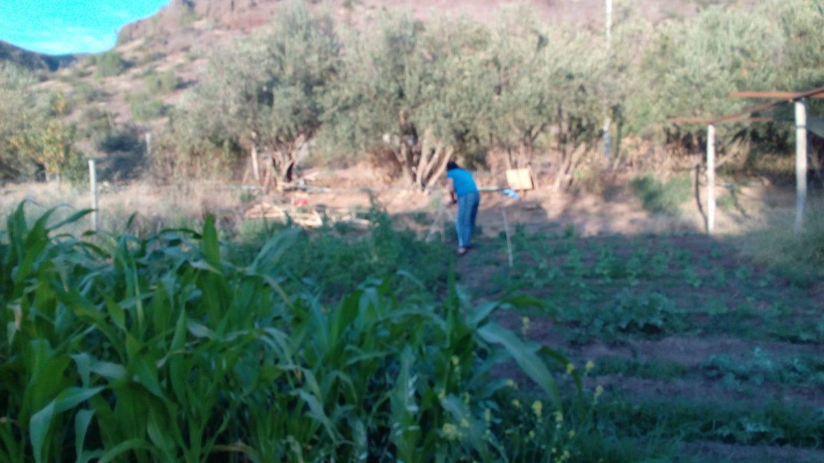 Organizaciones campesinas de Coquimbo ignoradaspor la política de Desarrollo Rural del gobierno de Piñera