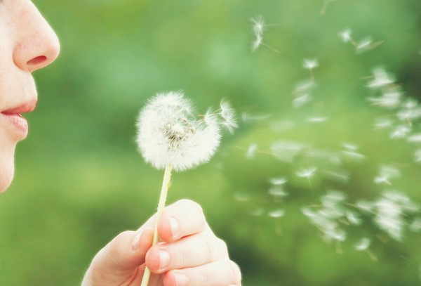 Consejos para evitar la alergia primaveral