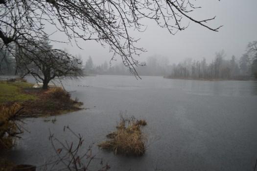 Partially frozen Tule Lake in Parkland