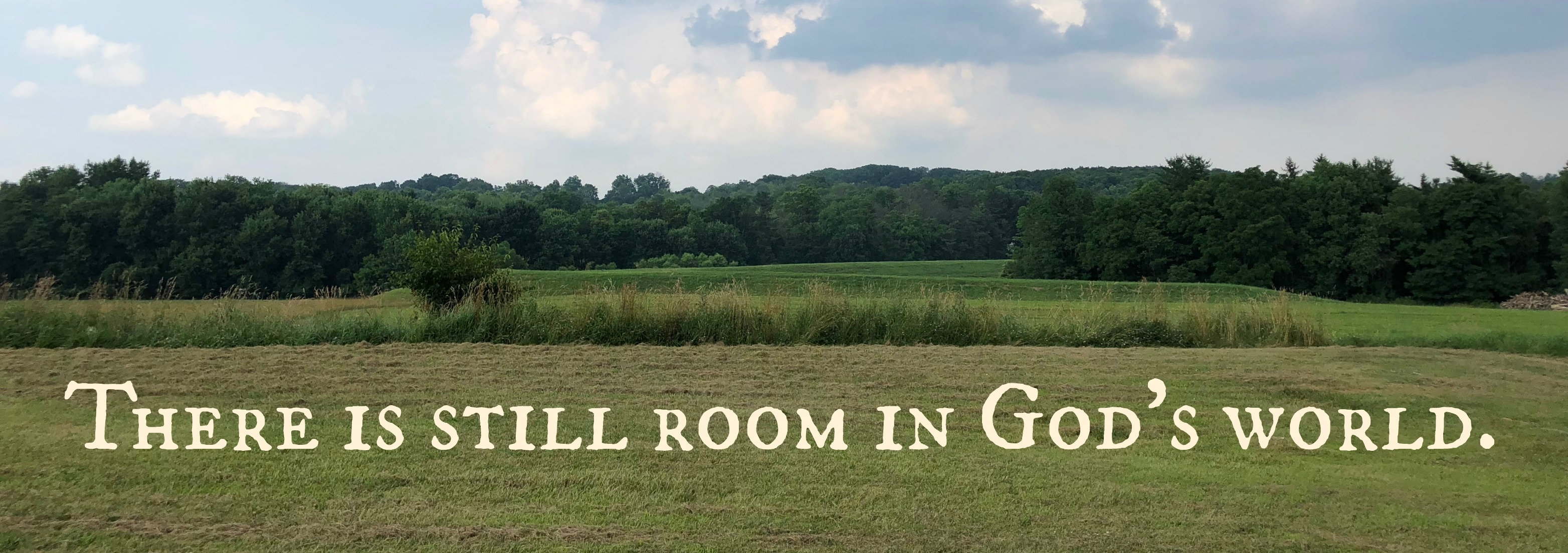 Still Room in God's World
