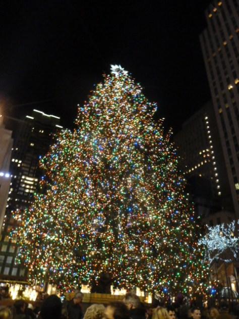 christmas_122513_31