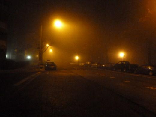 foggy_011514_12