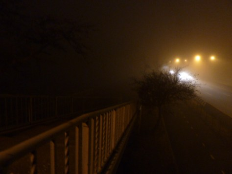 foggy_011514_18