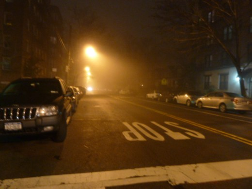 foggy_011514_20