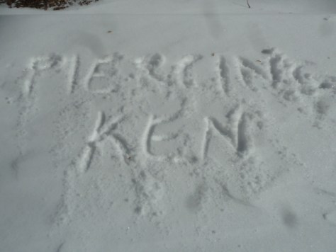 snowyday_010314_21