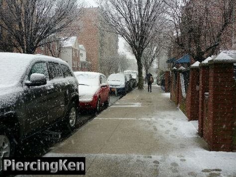 spring in nyc, spring in bay ridge,