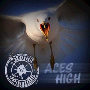 """Aces High"" (Single) by Steve 'n Seagulls"