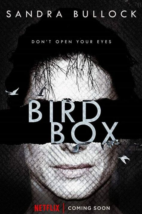 movie posters, promotional posters, bird box, netflix original