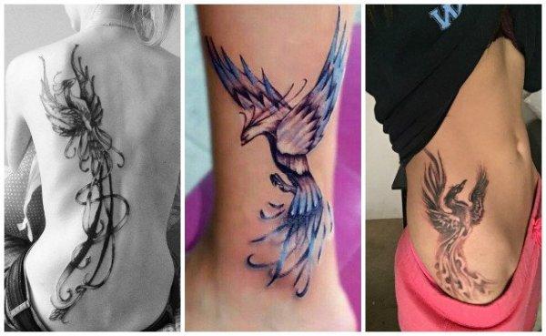 20 Imagenes Ave Fenix Tattoos Ideas And Designs