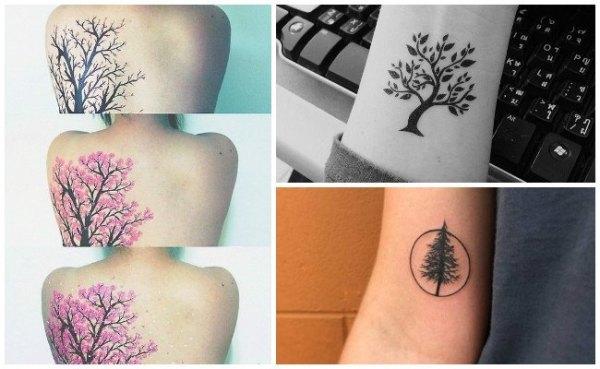 20 Pino En Brazo Tattoos Ideas And Designs
