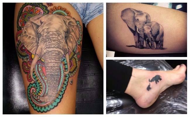 Tatuajes De Familia De Elefantes En La Espalda