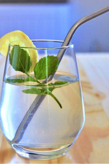 un verre avec un liquide transparent, une brache de menthe, rondelle de citron