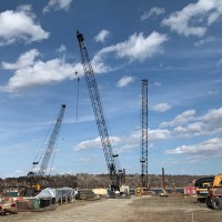 Three cranes_3.25.21
