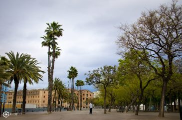 Barcelona-0105-01-35