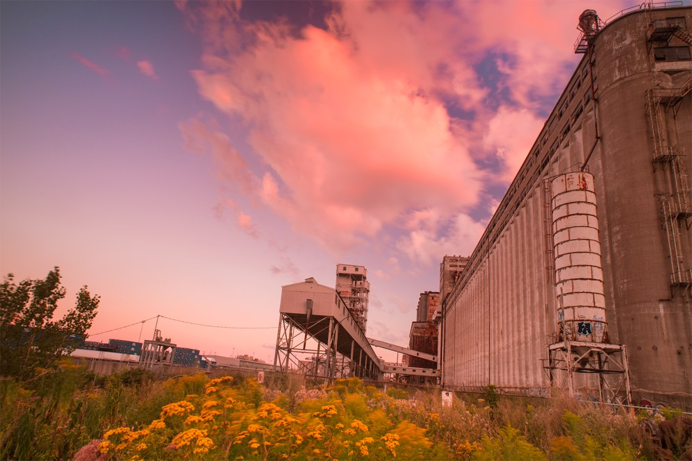 vieux_port_montreal_pink_cloud_silo_no_5_yellow_flowers_DSC2634_s_w