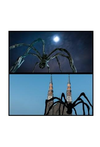 Arachnéïdes