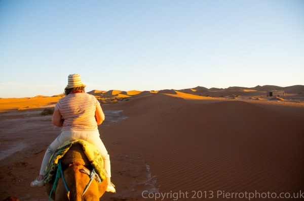 Camel trekking in the Sahara desert, Morocco