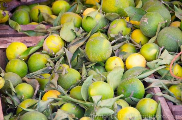 Fresh oranges in Morocco