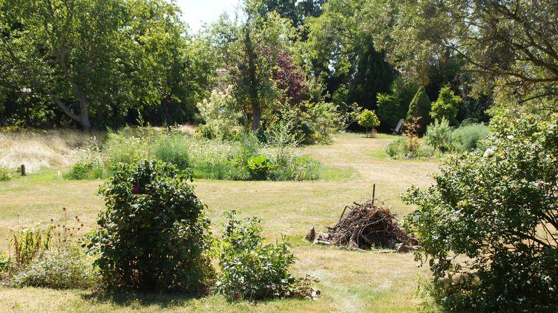 Blick in das Grundstück Alttrachau 31