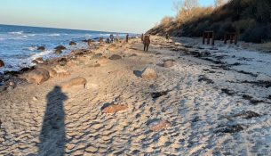 Pause an der Ostsee