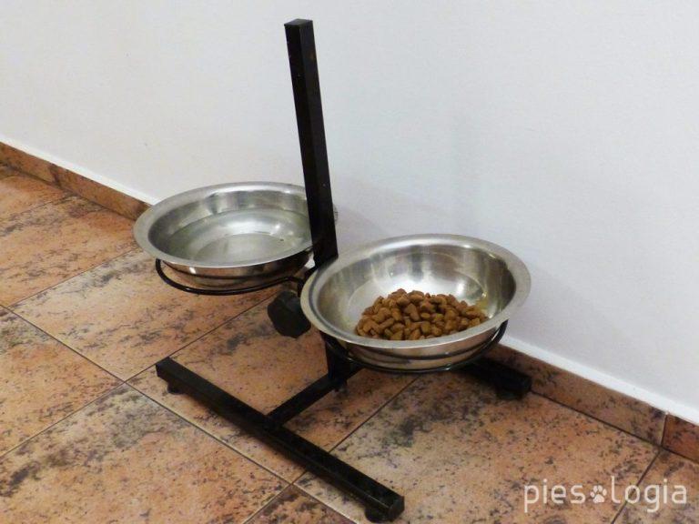 Wyprawka dla szczeniaka