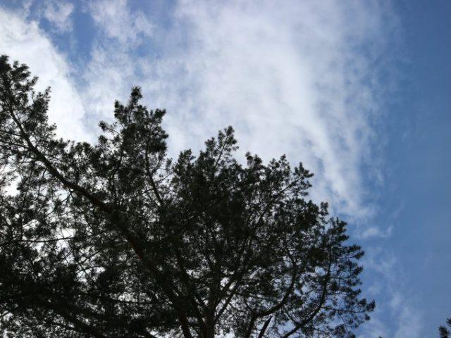 Pilvinen taivas.