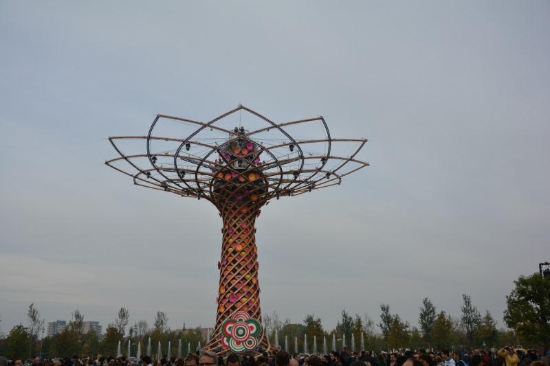 La mia giornata Expo 2015 albero della vita italia