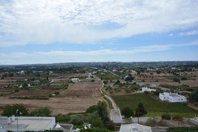cosa vedere valle d'itria ulivi