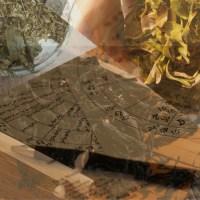 Horoskop herbaciany na rok 2018 - wróżenie z fusów
