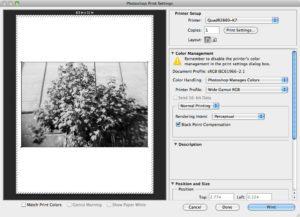 Photoshop CS6 Beta/Mac   InkjetMall