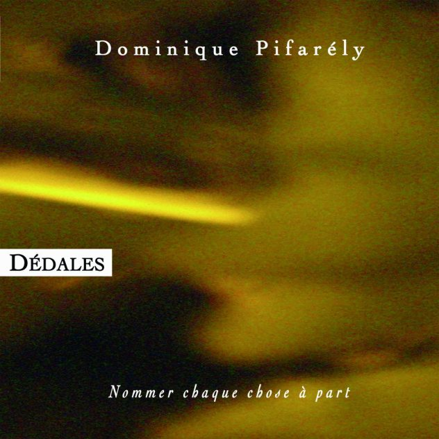Dominique Pifarély Image