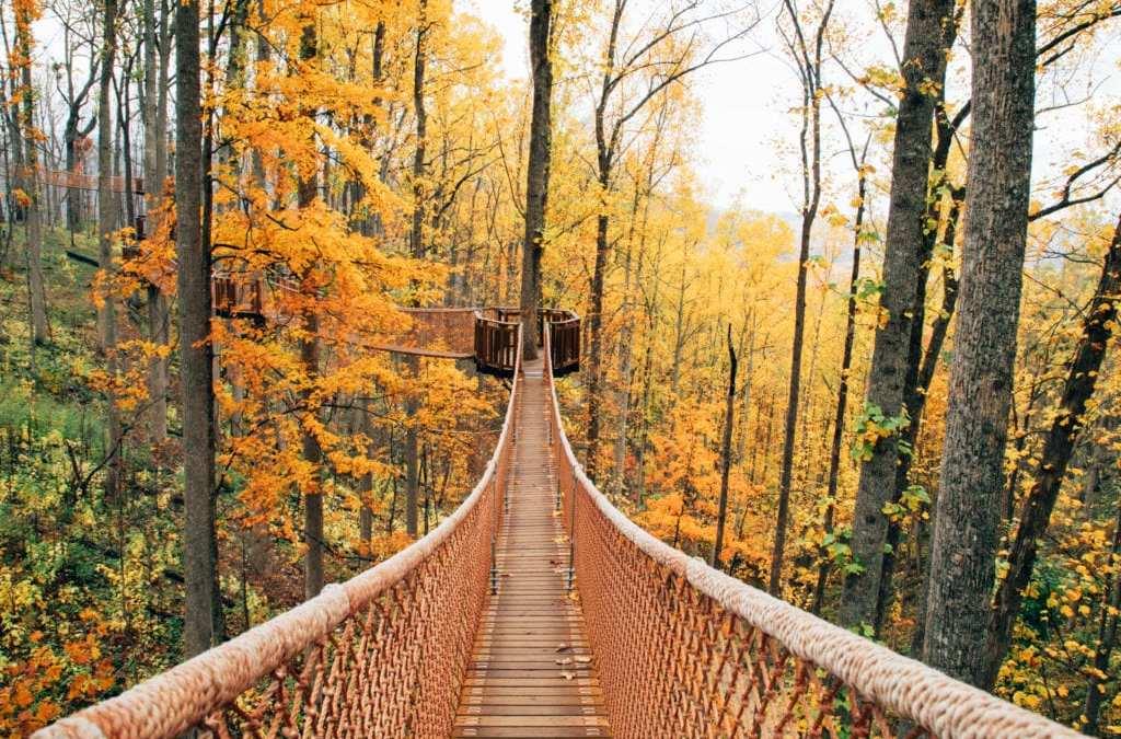 What to do in Gatlinburg, Pigeon Forge autumn colors, Gatlinburg autumn colors, Autumn in Gatlinburg, Autumn in Pigeon Forge, Autumn Colors in the Smokies, Anakeesta Gatlinburg, Things to Do in Gatlinburg