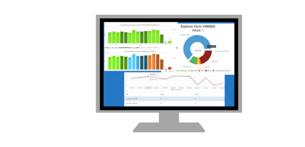 PigKnows Charts - Online Swine Production Software