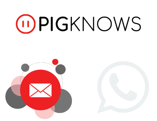 PigKnows - Email - Phone - Online Swine production Software