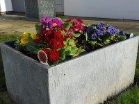 front-planter(mar17)