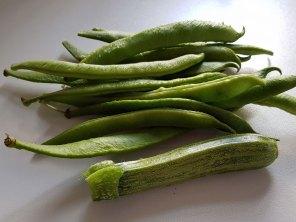 beans+courgette(jul17)
