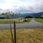Žítková a Kopanice: Krajina, která volá po nové čarodějce