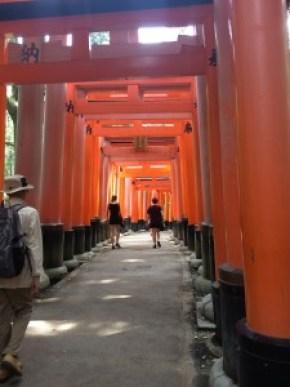 The famous Tori-gates.