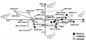 Maiorino et al. Esempio di grafico (morfospazio) dove sono proiettati gli esemplari in vista laterale di Protoceratops