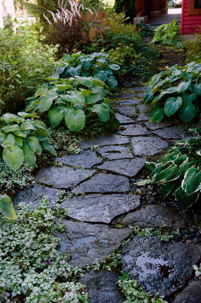 Shade garden and stepping stone path