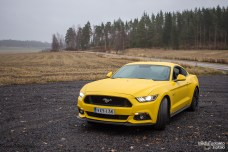 Mustang front