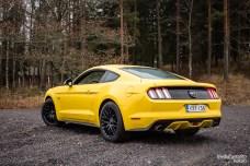 Mustang rear side