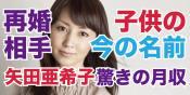 矢田亜希子の再婚相手の顔画像や子供の改名後の名前は?驚きの月収や愛車も判明!