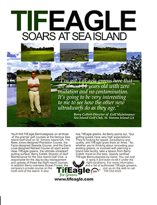 TifEagle at SeaIsland
