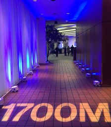 Floor and Entrance Lighting