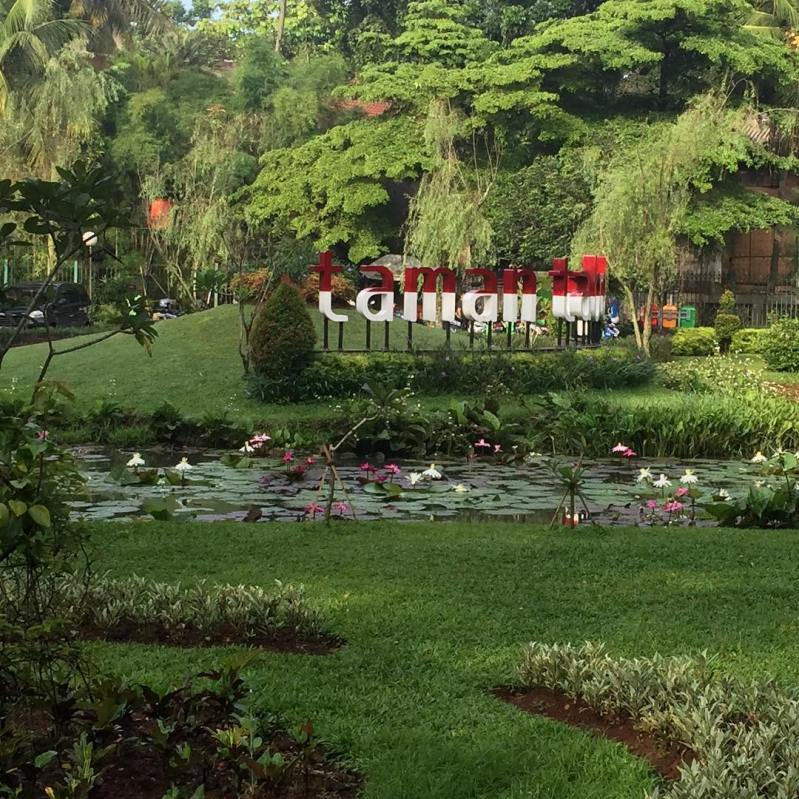cantiknya taman tabebuya jakarta