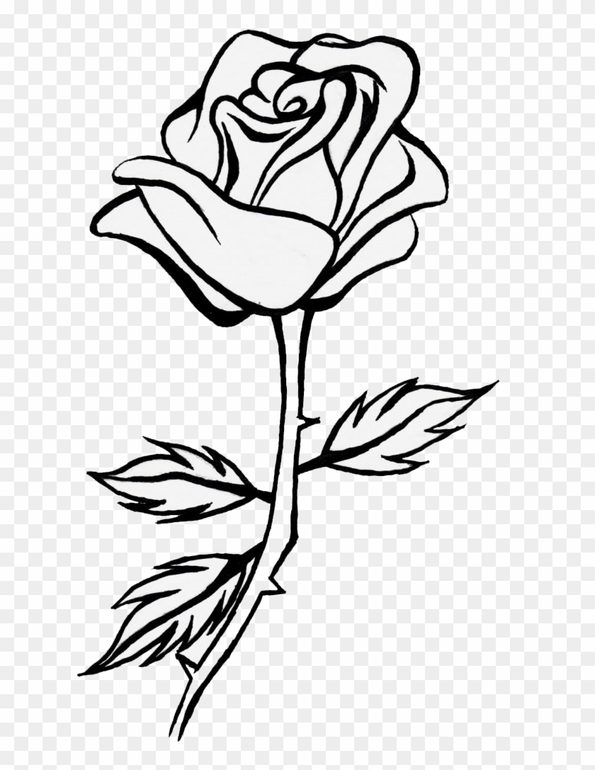Rose Drawing Png : drawing, Sunflower, Clipart, Black, White, Drawing, Flower, Download, (#2551257), PikPng